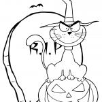 Halloween Cat on Pumpkin near...