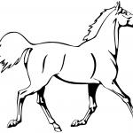 Kłusujący koń