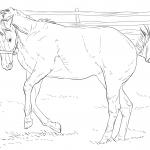 Brykający koń