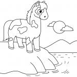Cute Horse Standing at the Seashore