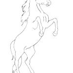 Koń na tylnych kopytach