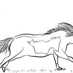 Koń miniaturowy - klacz