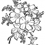 Dog Rose Flowers
