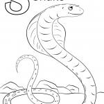 Letter S is for Snake