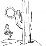 Słońce nad pustynnymi kaktusami
