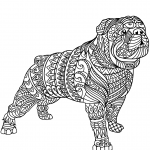 Bulldog Zentangle