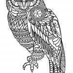 Owl Zentangle