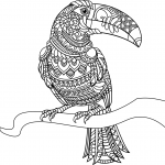 Toucan Zentangle