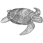 Sea Turtle Zentangle