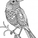 Northern Cardinal Zentangle